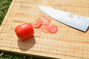 dalstrong-shogun-chef-knife