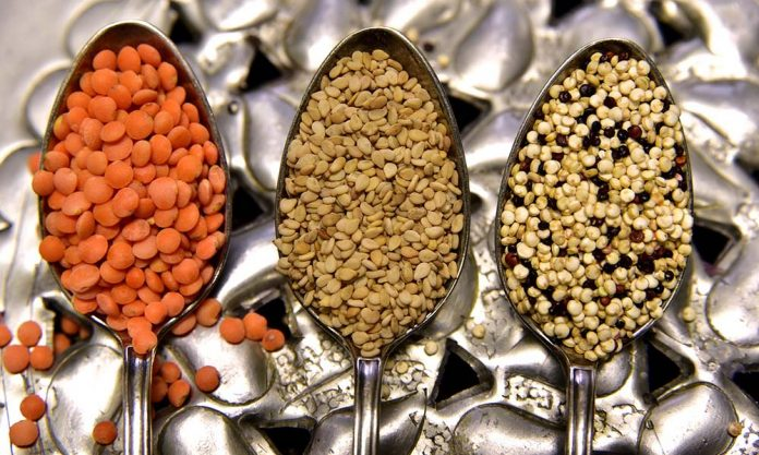 what are lentils